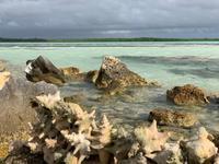 Romantische Strände von Bonaire