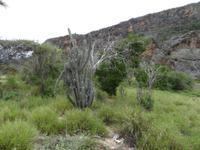 Die Trockenregion um Imias