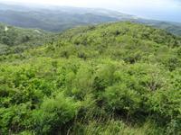 Die Hügel der Escambray