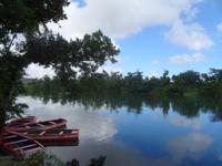 Flussfahrt auf dem Rio Toa