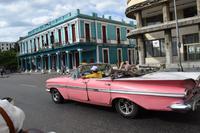 Oldtimer fahren Touristen durch Havanna