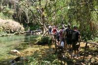 Parque Guayanara - El Venado