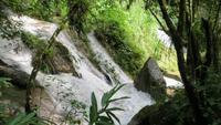0773 Wanderung im Parque Guanayara