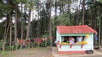 0811 Rückfahrt von der Wanderung im Parque Guanayara