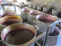 Besichtigung der Süßwaren-Herstellung (2)