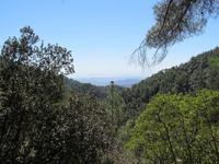 Blick über das Toodosgebirge