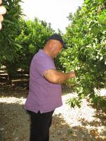 Besuchd einer Obstplantage