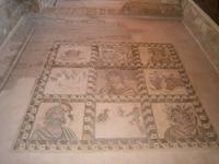 Haus des Dionysos - Bodenmosaik