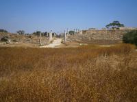 Die antike Stadt Salamis