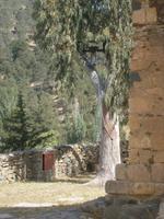 Scheunendachkirche Panagia Forviotissa (Asinoe) - Glocke im Baum