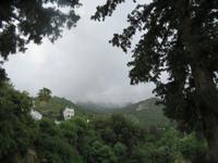 Bellapais