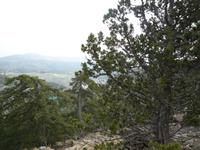 Wanderung im Trodos-Gebirge