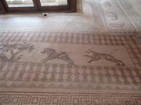 Haus des Dionysos - Mosaik