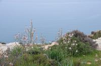 Südküste Zyperns