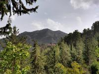 172 Blick auf den Höhenzug unseres Trails