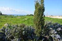 Antike Stadt Kourion