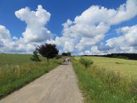 Radweg nach Rosteijn