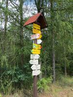 leichte Orientierung auf Radwegen im Thaya-Nationalpark