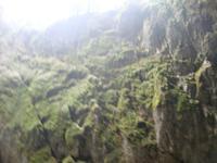 Punkva-Höhlen