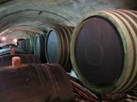 im Erzbischöflichen Weinkeller Kromeriz