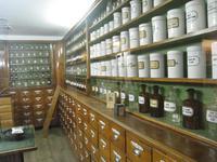 im Waldmuseum Zwiesel