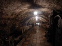 Weinkeller Schloß Melnik