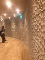 Elbphilharmonie  Phantastische Akkustik