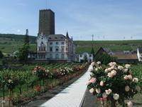 Die Boosenburg in Rüdesheim