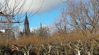 Blick auf das Münster in Konstanz