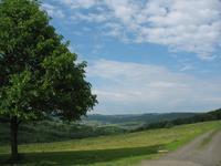 Birx - Aussicht vom Dorfrand