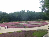 Heidegarten Schneverdingen
