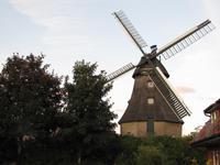 Besichtigung der Mühle in Wittensee