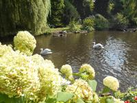 Weltvogelpark Walsrode (bei den Pelikanen...)