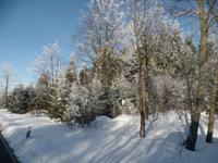 Winterliches Wiedersehen im schönen Frauenstein/Erzgebirge mit Mandy Lehmanns Eberhardt TRAVEL Strammkunden
