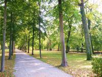 123-Im Hofgarten
