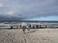 Am rauen Strand von Hiddensee