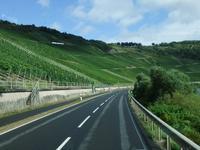 Fahrt entlang der Weinhänge