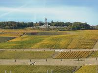 Blick zum Niederwalddenkmal