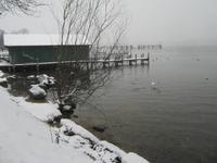 Spaziergang am Starnberger See
