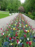 Hofgarten Bayreuth