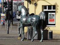 Dieses Pferd steht in Berlin-Köpenick!
