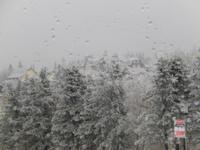 bei Winterwetter