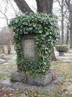 Luther-Gedenkstein Belgern