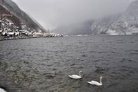 Hallstatt am Hallstätter See, Salzkammergut, Oberösterreich