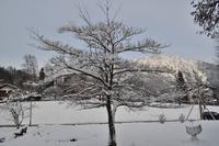 Silvester im Berchtesgadener Land