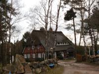In dre Lüneburger Heide...