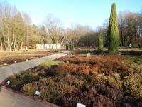 Heidegarten von Schneverdingen