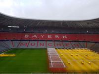 Allianz Arena (7)