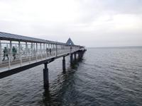 Seebrücke Heringsdorf