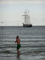 Die gruene Robbe Jens in der Nordsee